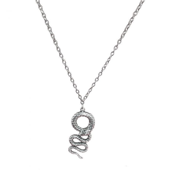 chain necklace with snake